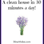 A clean (-ish) house in 30 minutes a day