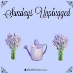 Sundays Unplugged ~ 11/22/15