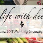 A Grocery Haul ~ June 2017