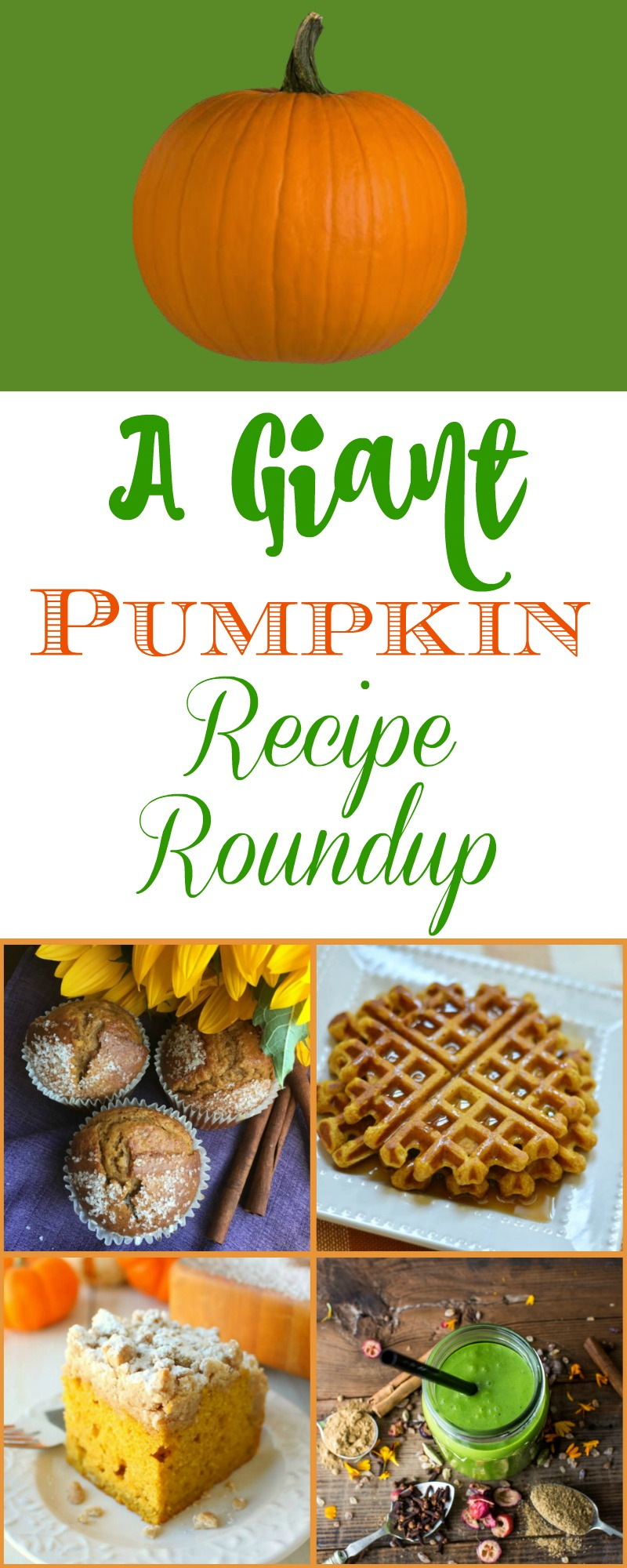 A Giant Pumpkin Recipe Roundup