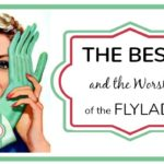 The Best (and Worst) of The Flylady