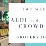 2 Week Aldi + Crowd Cow Grocery Haul