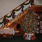 Our Christmas Tree…