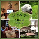 A day in my life ~ A look back