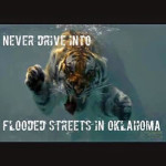 Tornadoes and flooding and tigers…oh, my!