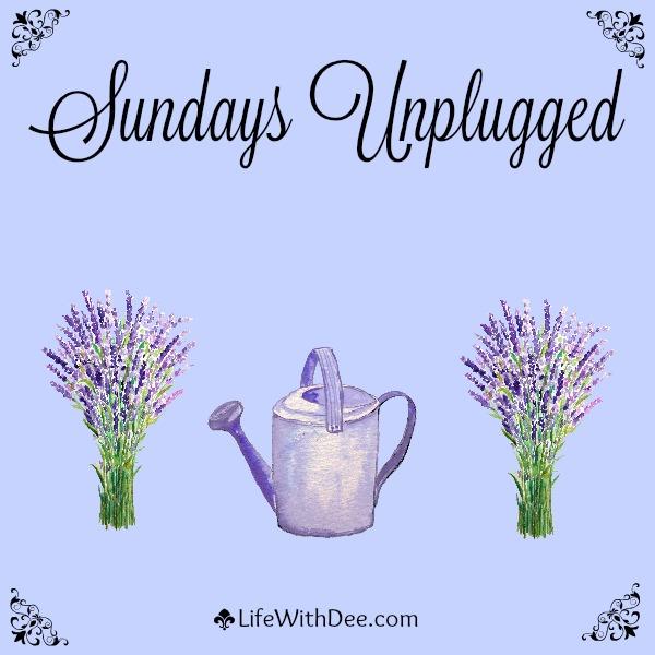 Sundaysunplugged