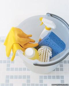 Martha Stewart Spring Cleaning Checklist