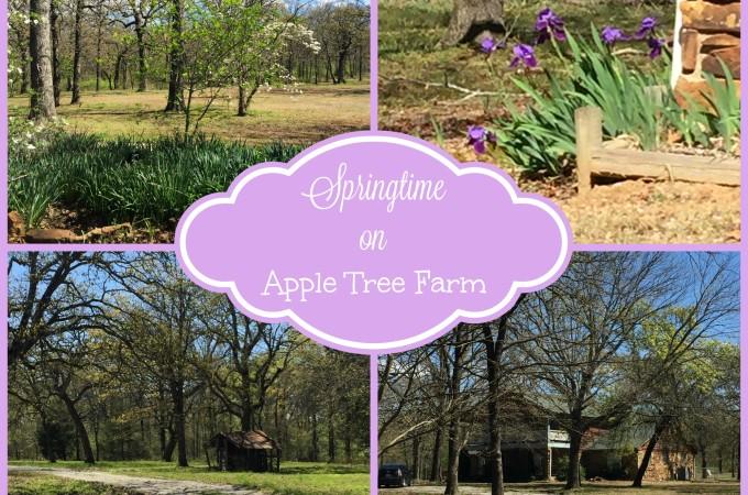 Springtime on Apple Tree Farm