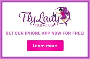 FlyLady App