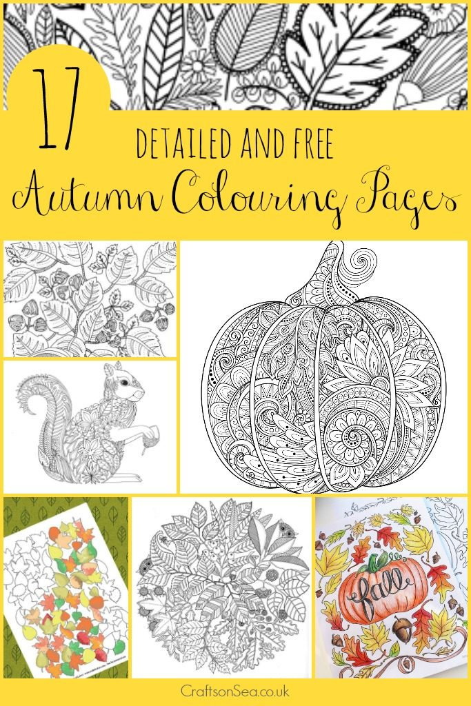 Free-printable-autumn-adult-coloring-pages