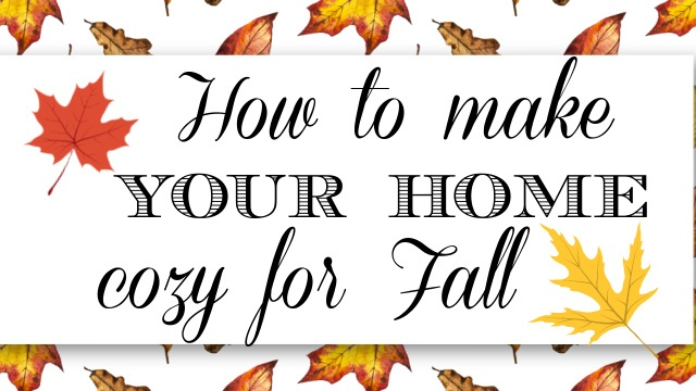 cozy for fall graphic