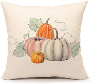 picture of fall pillow cover