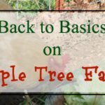 Back to Basics on Apple Tree Farm