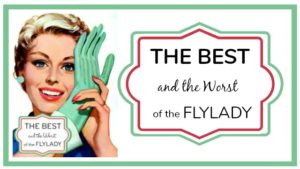 The Best and the Worst of the FlyLady