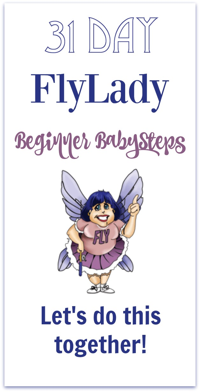 FlyLady BabySteps