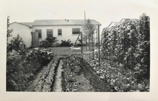Grandpa's Victory Garden