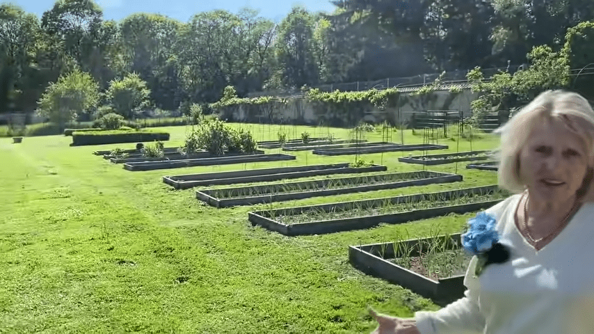image of French potager inspiring garden